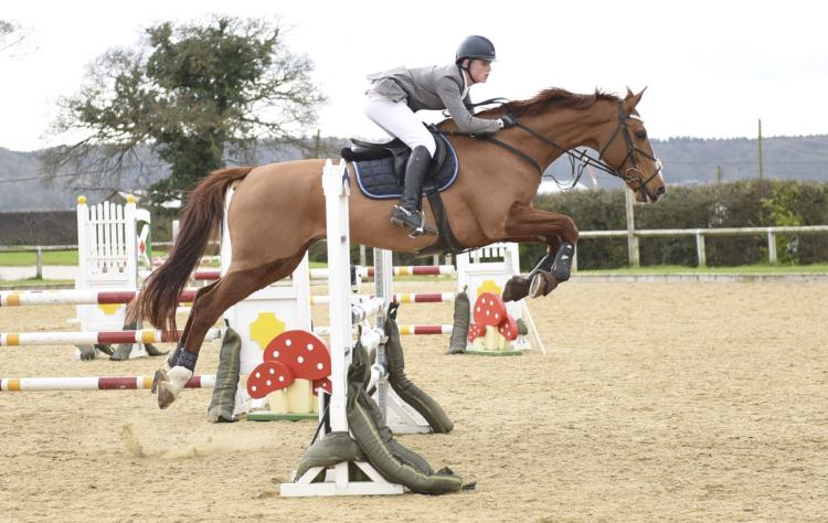 Horse Jumping Image - Derby & Burton on Trent Sports Photographer Image purchase Example