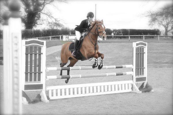 Derby Sports Event Photographer - Future Events - Image of horse jumping hurdles